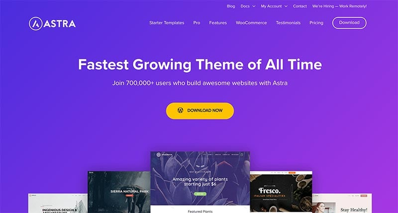 The Fastest & BEST WooCommerce Themes in 2020 (FREE & Paid) 16