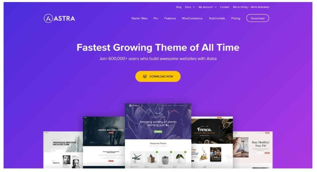 Fastest WordPress Themes 15